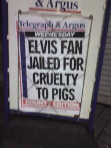 Bizarre Headlines