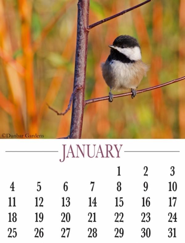 January 2015 calendar