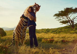 Story Blog man hugging tiger