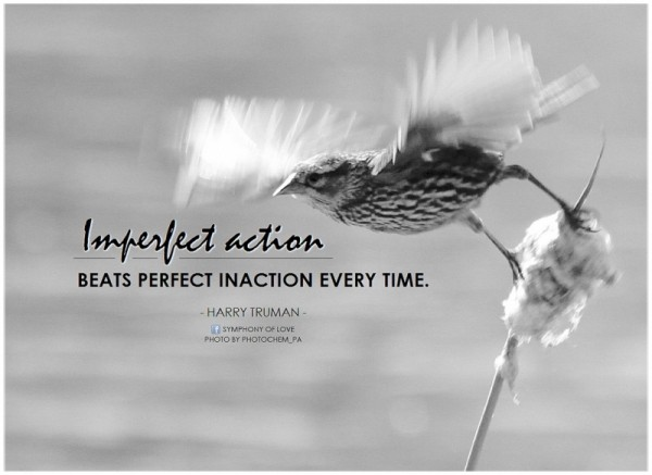 Imperfect action beats perfect inaction every time